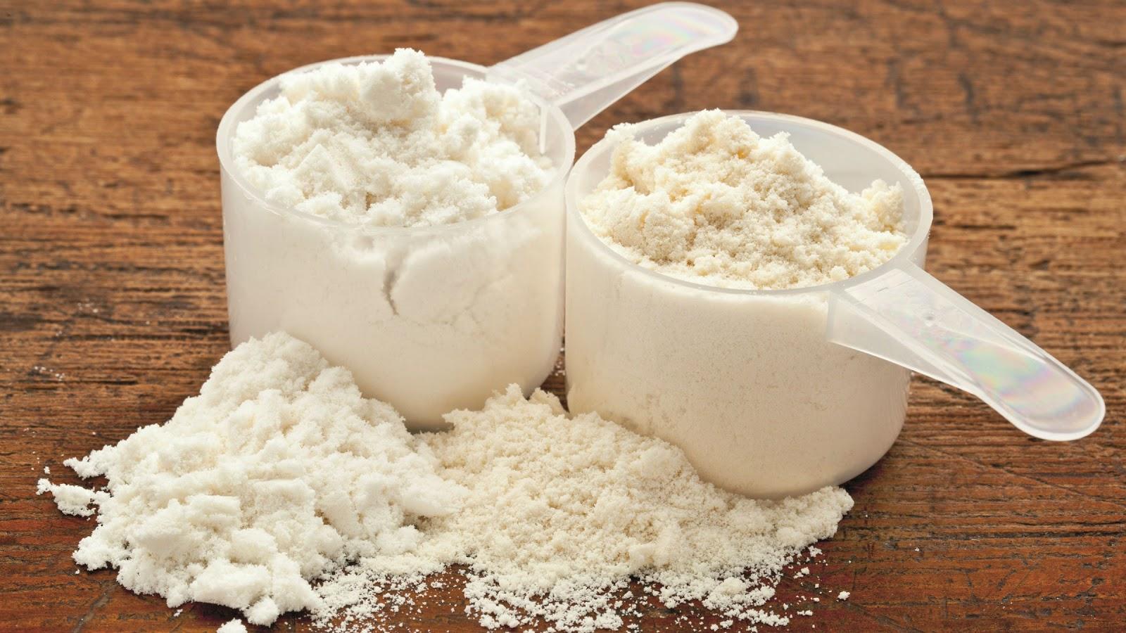 Bột casein protein